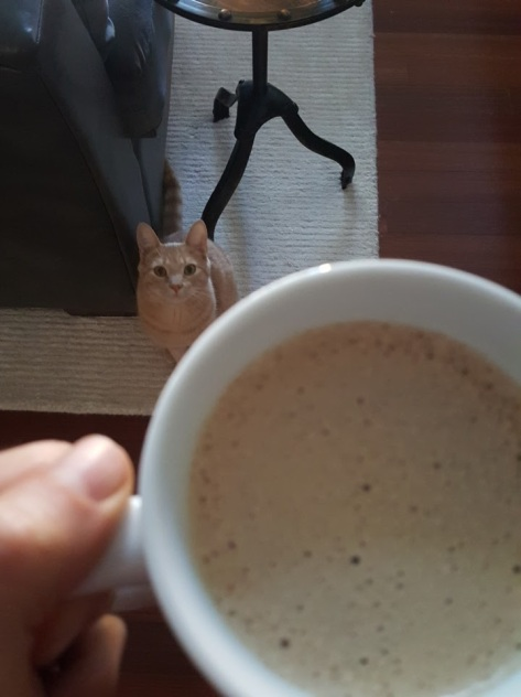 Steve and the butter coffee